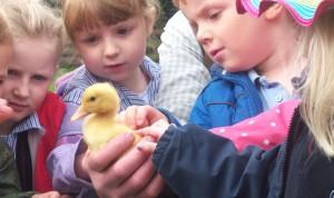 Acton Scott children with chick