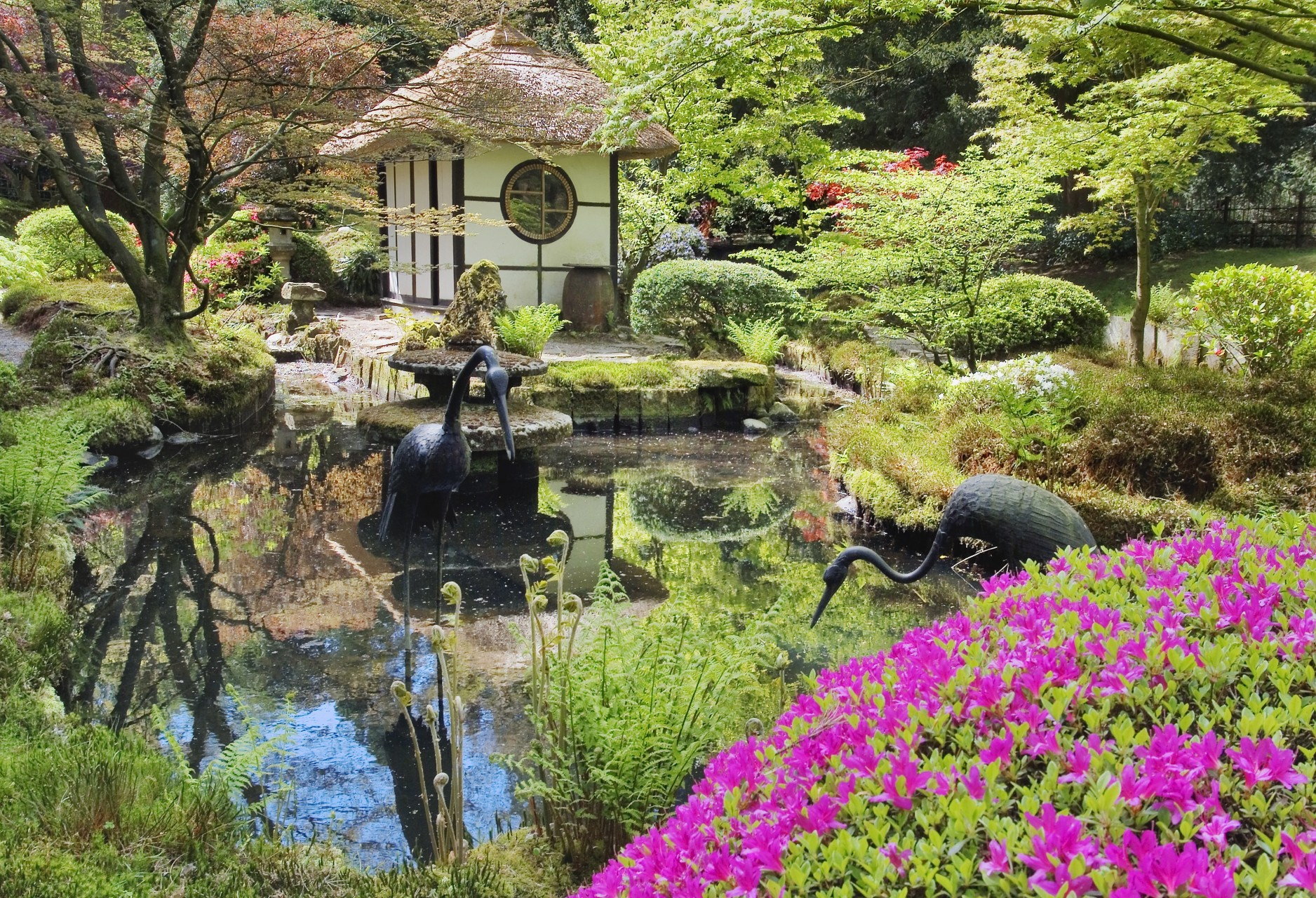 Japanese Garden at Tatton Park