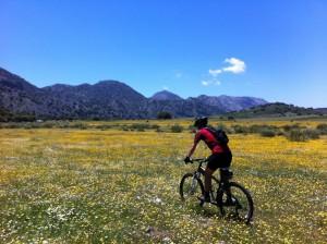 Hike + Bike